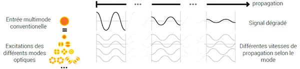 signal-fibre